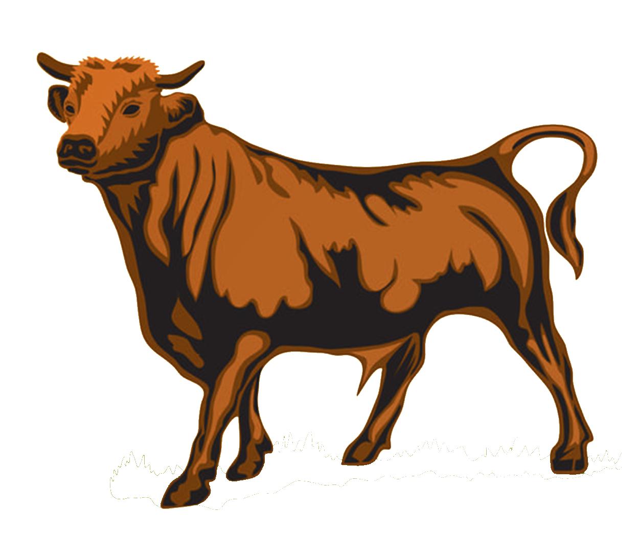 Sustain-a-Bull